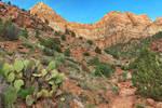 Cactus Mountain Trail (freebie)