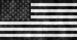 United States of Black Lives Matter