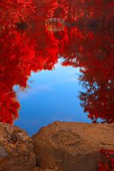 Jean-Drapeau Pond - Autumn Fantasy