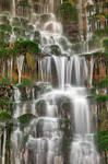 Springing Moss Falls