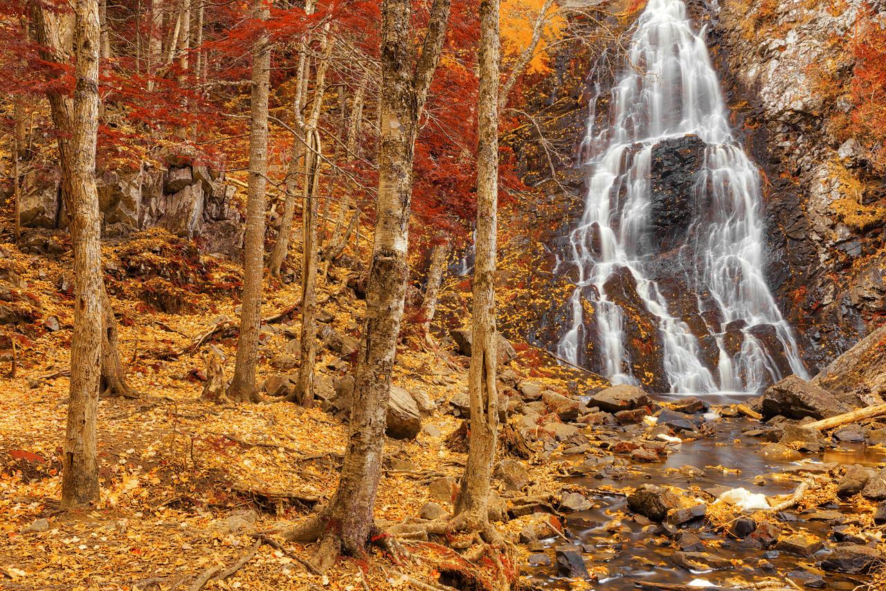 Hays Autumn Fantasy Falls