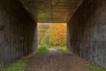 Autumn Georgiana Tunnel