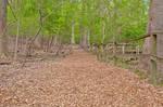 Woodend Sanctuary Trail