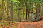 Autumn Forest Ruins - George Childs Park