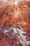 Acrylic Sunbliss Falls by boldfrontiers