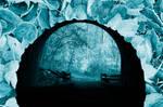 Cold Toe Tunnel