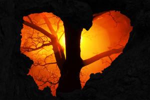 Burning Love Tree