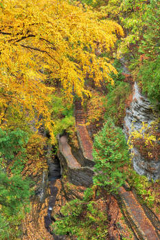 Autumn Gorge Trail - Watkins Glens