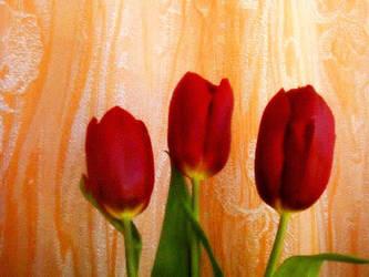 Spring trio by Mladavid