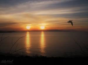 Double Sunset by BillyNikoll