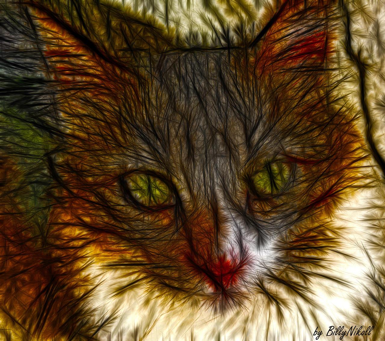 Fractal Cat by BillyNikoll