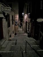 Night walk in the old town by BillyNikoll