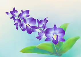 Purple Dendrobium