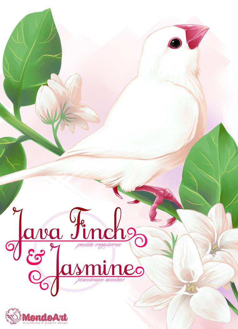 Java Finch and Jasmine by MondoArt