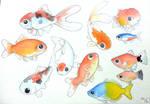Watercolor: Cute Fishies