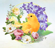 Canary and Blossoms