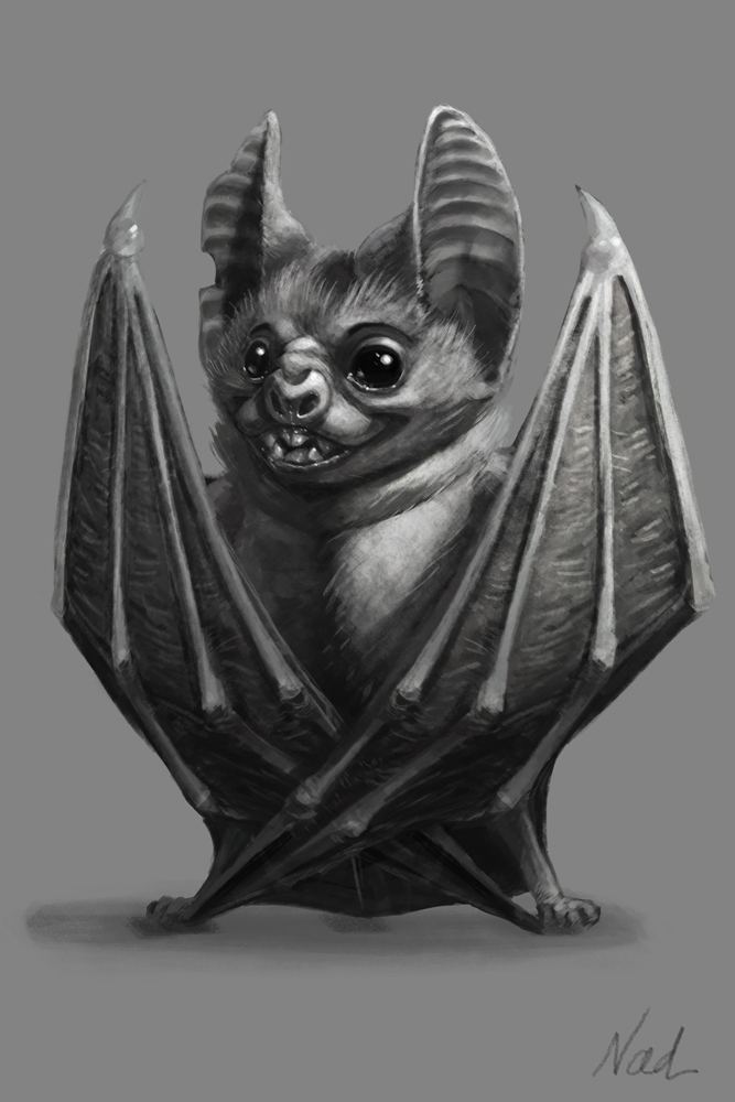 Bat by kinkajoomotion