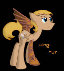 Wing-Nut by PHDrillSergeant
