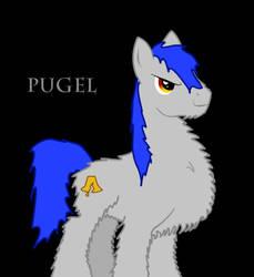 Pugel by PHDrillSergeant