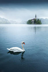 ...bled IV... by roblfc1892