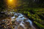 ...waterfall in dolomiti II...