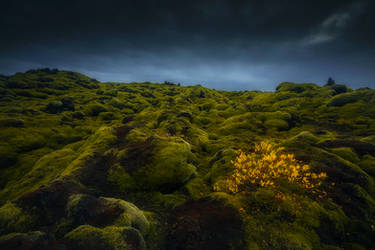 lava fields IV by roblfc1892