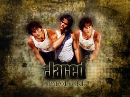 Wallpaper- Jared Padalecki