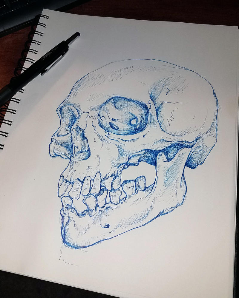 Suddenly, a skull from out of nowhere by MiG29TangentBoy
