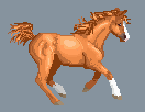 Pixel Rudy by shadee