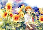 Sunflower and Tajima