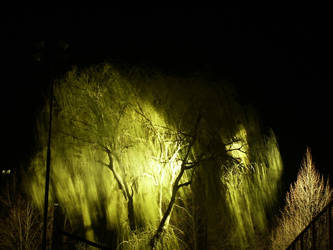 A night shot by GeNiUs82
