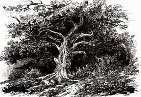Slavic Mythology -The Holy Oak by masiani