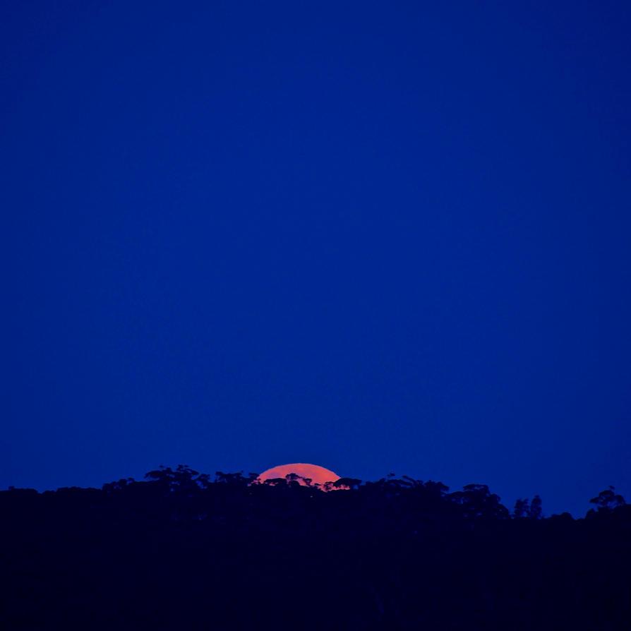 Moonrise by ColobineDownUnder