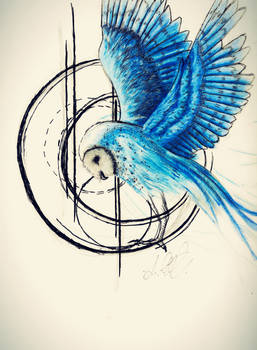 Random Sketch - Blue Owl