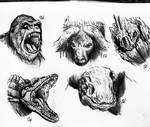 Kong : Skull Island sketches