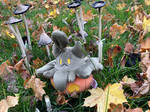 amidst the inkcaps