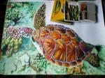 CRAYON - Turtle