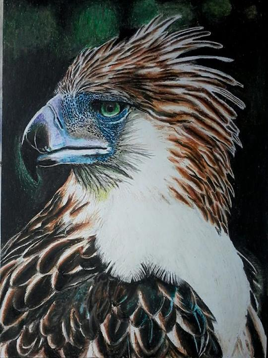 Philippine eagle painting