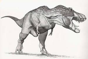 Draw Dinovember Day 30 Tyrannosaurus rex