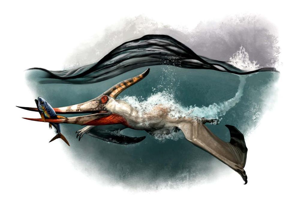 Draw Dinovember 2016 Day 3 Pteranodon longiceps by daitengu