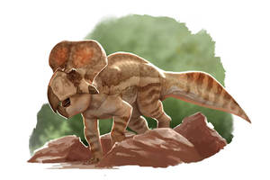 Draw Dinovember 2016 Day 7 Protoceratops