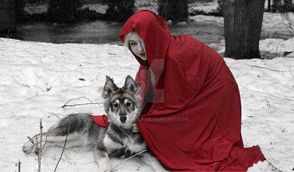 Red Lady and the direwolf