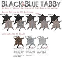 Black and Blue Tabby by Kitsufox
