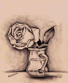 Sketching a rose