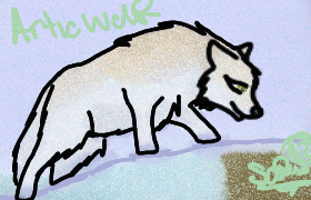 Arctic Wolf by WolfxTracks