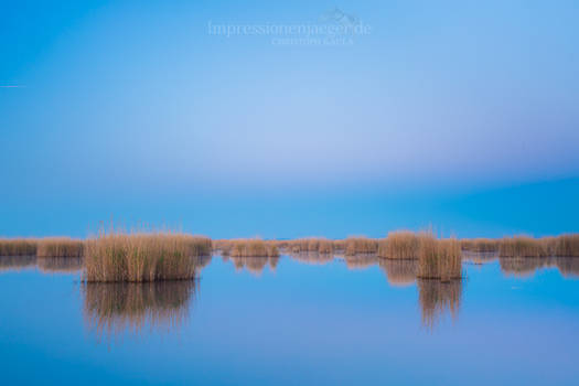 Lake Neusiedl by chriskaula