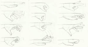 Anatomy: hands 02