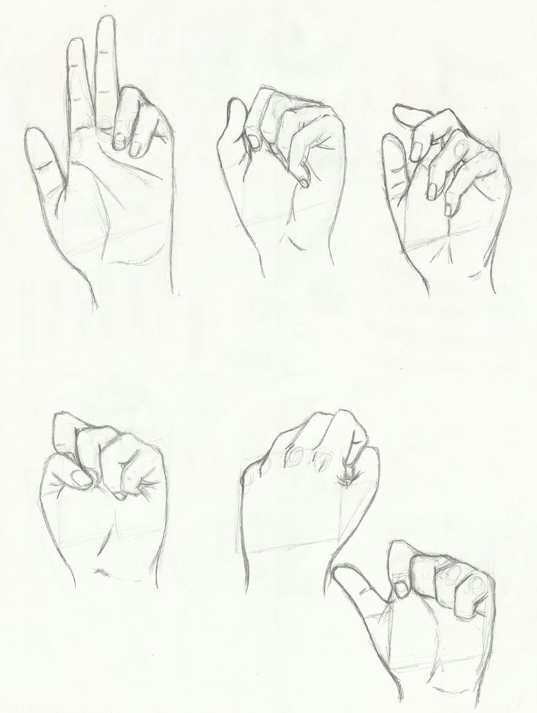 Anatomy: hands 04 by kiba-kun1289 on DeviantArt