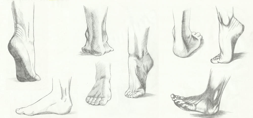 Anatomy: feet 02 by kiba-kun1289 on DeviantArt