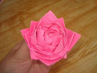 Modular Rose 2 by KiYtZiA